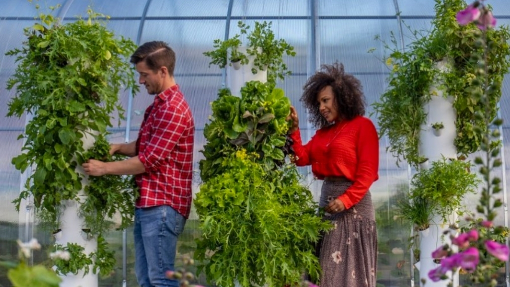 FIRST AN EPIC CITY CENTER ROOFTOP FARM AND NOW A REGENERATIVE AG FARM, TOO!